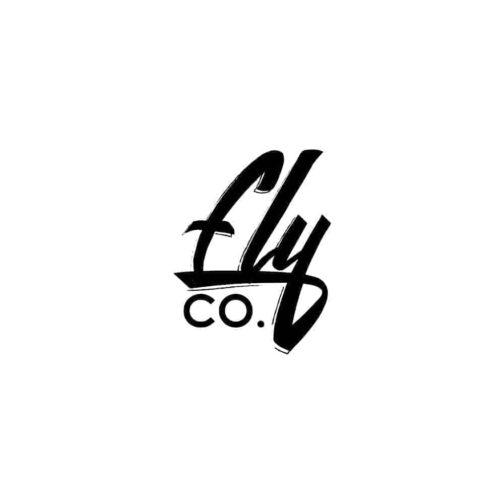 eviory minimal logo & badge - fly