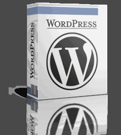 best wordpress freelance malaysia